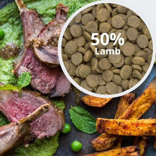 Behavioural Balance: Lamb, Sweet Potato and Mint