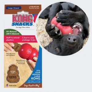 kong treats